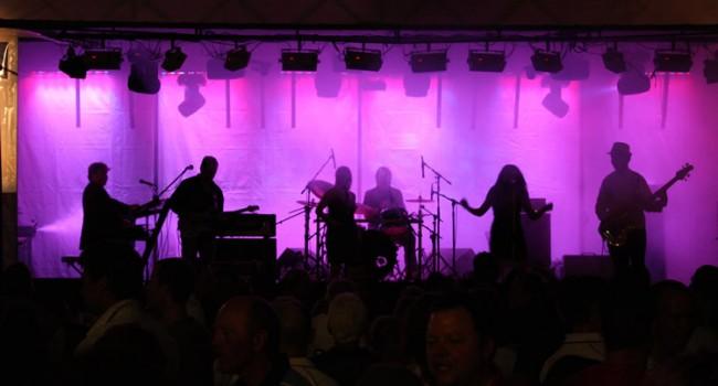 Sydney Wedding Band Entertainment